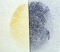 Как сделать искусственный отпечаток пальца